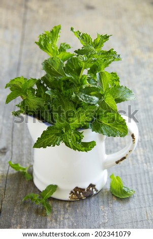Fresh mint in the pitcher on the old Board.