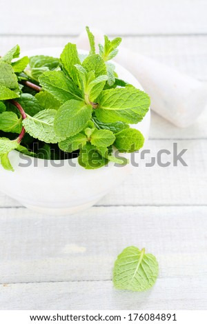 fresh mint in white mortar, herb - stock photo