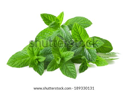 Fresh mint isolated on white background  - stock photo