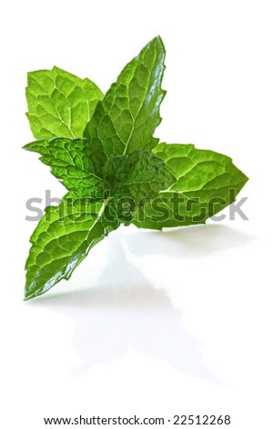 Fresh mint leaves, casting shadow on white surface.