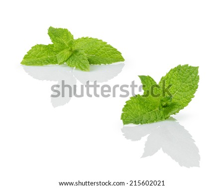 fresh mint leaves, isolated on white background - stock photo