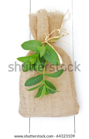 Fresh mint leaves with hessian bag isolated on white wood - stock photo