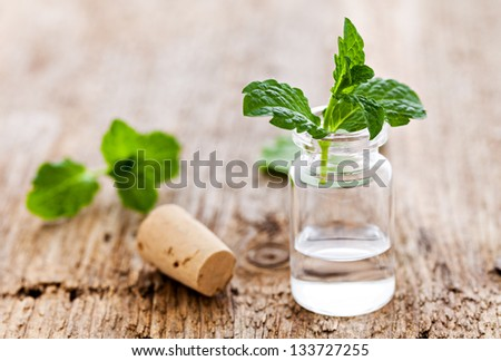 fresh mint oil in a bottle - stock photo