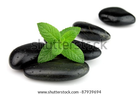 Fresh mint on the stones with drops