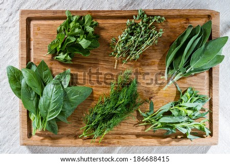 Fresh mint, thyme, sage, basil, dill and tarragon from the vegetable garden, ready to be used. - stock photo