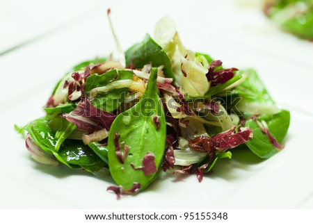 Fresh mixed greens dinner salad on a white background.