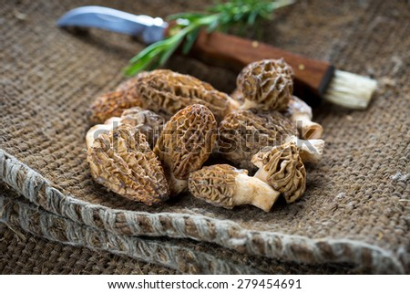 Fresh Morelle Mushrooms on rustic background