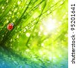Fresh morning dew on a spring grass and little ladybug, natural background. Sunny day concept. - stock photo