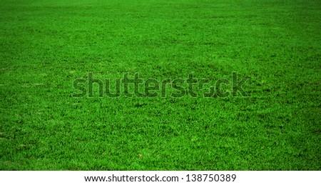 Fresh morning green sport grass - stock photo