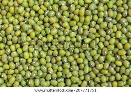 fresh mung bean grams close up view - stock photo