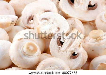 Fresh mushroom - stock photo