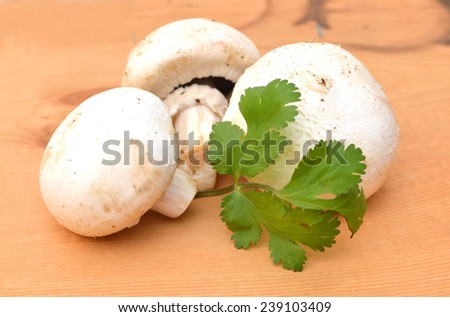 Fresh mushrooms and green parsley leaves isolated on wooden board