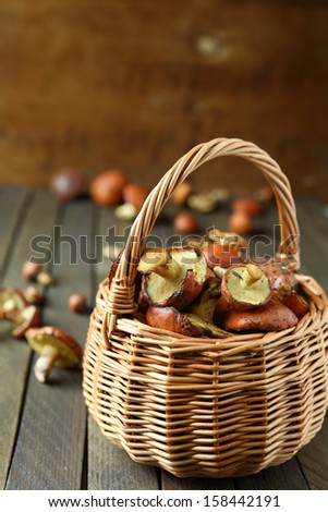 fresh mushrooms gathered in the forest in a basket, food close up - stock photo