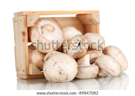 fresh mushrooms in a wooden box isolated on white - stock photo