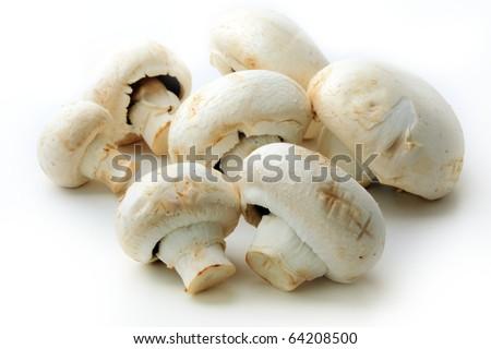 Fresh mushrooms isolated on white - stock photo