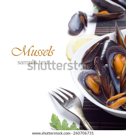 Fresh mussels - stock photo