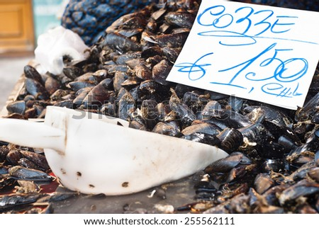 Fresh mussels on fish farmer market ready for sale and use for ingredient. Market in Palermo, Italy - stock photo
