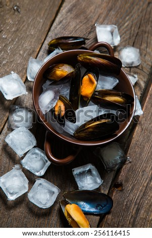 Fresh mussels on ice with lemon and spices - stock photo