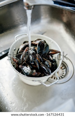 Fresh mussels shells being washed and prepared in kitchen sink.  - stock photo