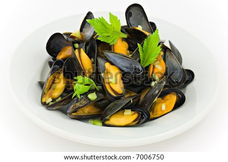 Fresh mussels with herbs - stock photo