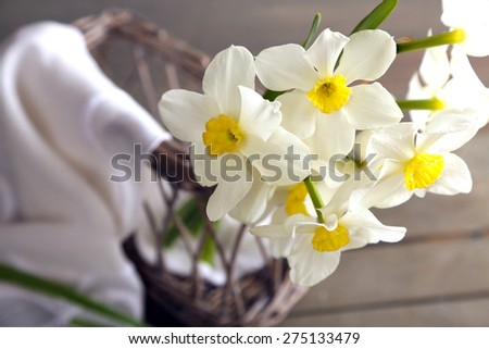 Fresh narcissus with wicker basket on wooden table, closeup - stock photo