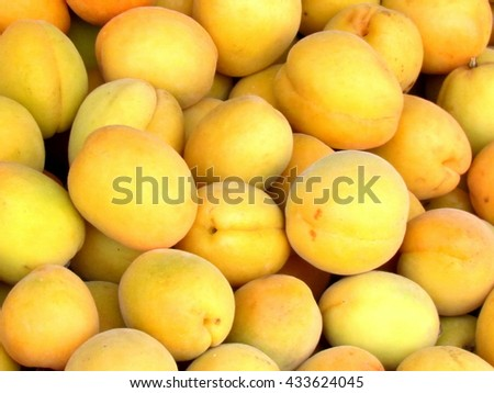 Fresh natural apricots on bazaar in Tel Aviv, Israel