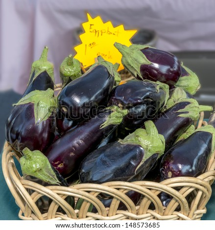 Fresh natural Eggplant ripe and ready to eat - stock photo