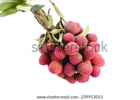Fresh of litchi fruit and copy space isolated on white background - stock photo