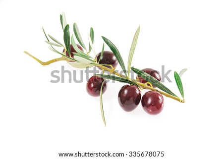 fresh olives isolated on a white background. Olives from Sicily, Italy - stock photo