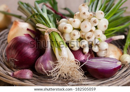 Fresh onion in a country style - stock photo