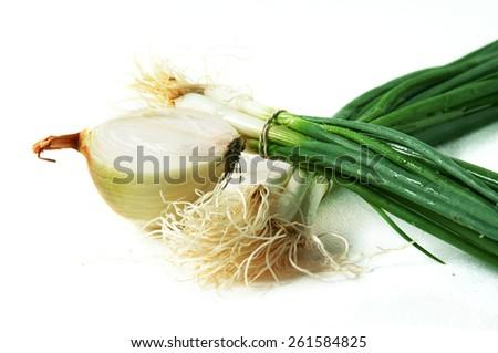 Fresh onion on white - stock photo
