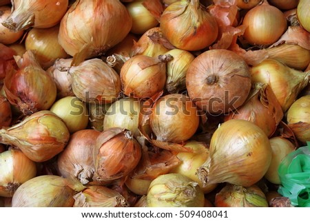 Fresh onions displayed in greengrocery