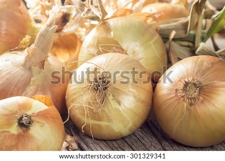 Fresh onions on a wooden table