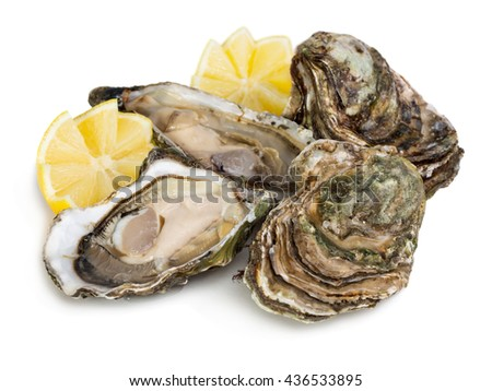 Fresh open and closed oysters with lemon isolated on white background - stock photo