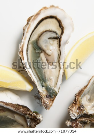 Fresh open oyster on plate with lemon - stock photo