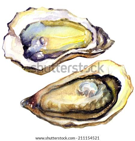 Fresh opened oyster on white background - stock photo