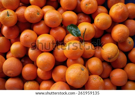 fresh oranges on farmers market  - stock photo