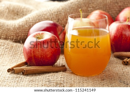 Fresh Organic Apple Cider with Apples and Cinnamon - stock photo