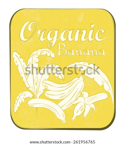 Fresh Organic Banana Label. Vector illustration. Retro fruit design. Old paper texture background.  - stock photo