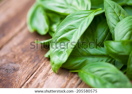Fresh organic basilic leaves on a wooden table.