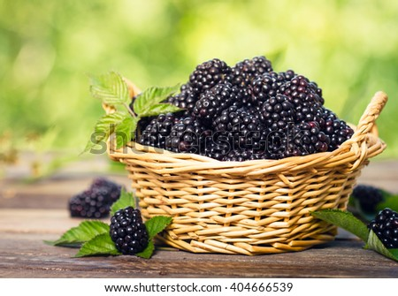Fresh organic blackberries in the basket - stock photo