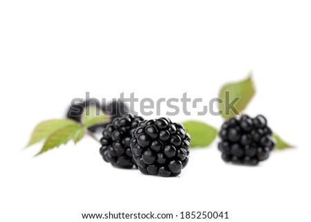Fresh organic blackberries isolated on white background - stock photo