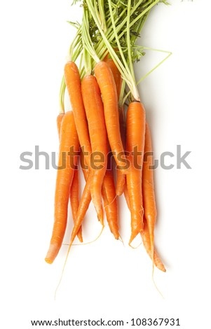 Fresh Organic Carrots against a back ground