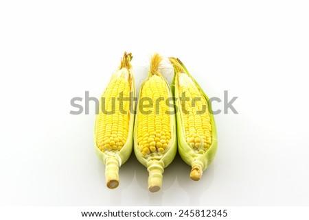 Fresh organic corn, Maize on white background.  - stock photo
