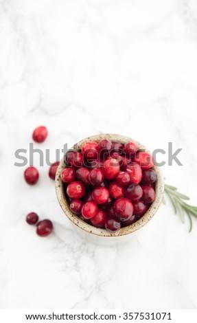 Fresh Organic Cranberries in Stoneware Bowl - stock photo