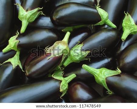 fresh organic eggplants as food background - stock photo
