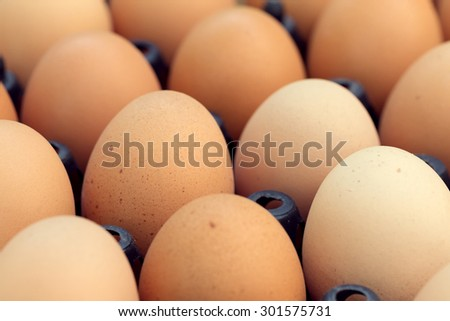 fresh organic eggs from chicken farm agriculture for sale at the market - stock photo