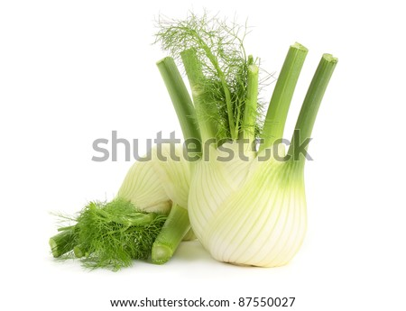 Fresh, organic fennel on a white background.