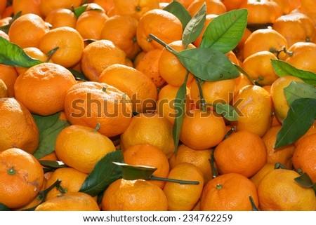 Fresh organic mandarin orange or mandarine (Citrus reticulata) on sale on farmers market - stock photo