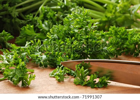Fresh organic parsley with knife on wooden cutting board.  Macro with shallow dof. - stock photo